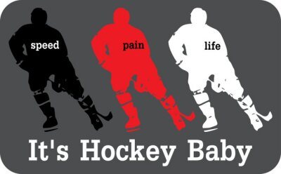 Obraz Hokej štítek