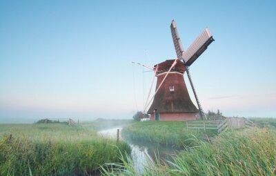 Obraz Holandský větrný mlýn v ranním světle