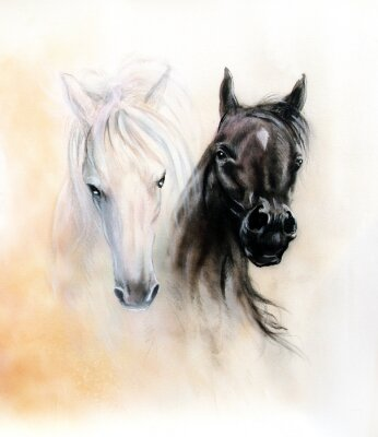 Obraz Horseheads, dvě černé a bílé koně lihoviny, krásný detail