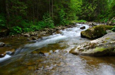 Obraz Horské řeky