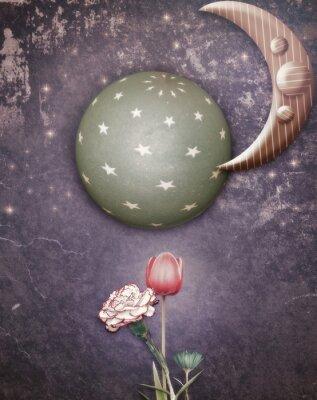 Obraz Hvězdná noc s měsícem a květy na jaře