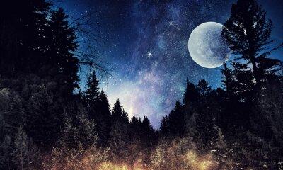 Obraz Hvězdné nebe a měsíc. Smíšená média
