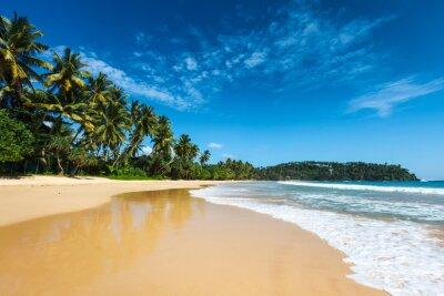 Obraz Idylické pláži. Srí Lanka
