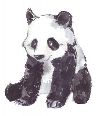 Obraz ilustrace kresba pandu