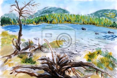 ilustrace Lake mrtvé dřevo