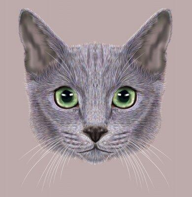Obraz Ilustrace portrét Ruská modrá kočka. Roztomilý kočka domácí se zelenýma očima.