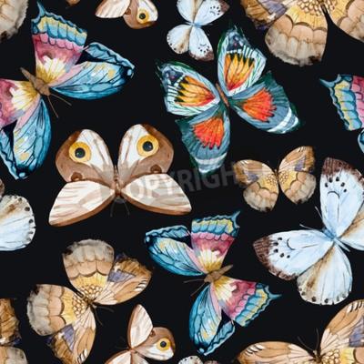 Obraz ilustrované akvarel motýli
