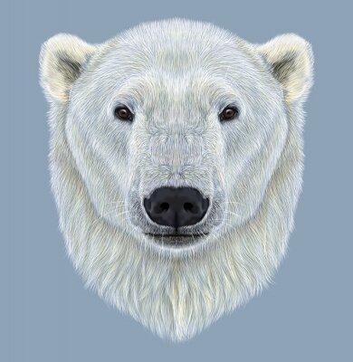 Obraz Ilustrovaný Portrét ledního medvěda