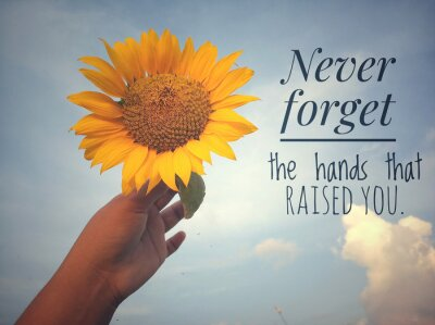 Obraz Inspirational motivational quote - Never forget the hands that raised you. With background of blue sky and beautiful sunflower blossom in hand. Photo concept with nature.