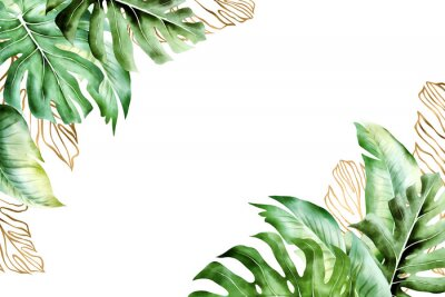 Obraz Isolated tropic palm leaves frame