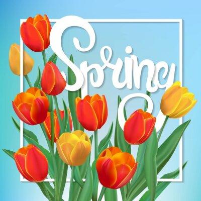 Obraz Jarní ilustrace s tulipány a rámem.