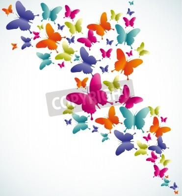 Obraz Jarní motýla pestré složení. Vektorové ilustrace vrstvené pro snadnou manipulaci a zakázkové zbarvení.
