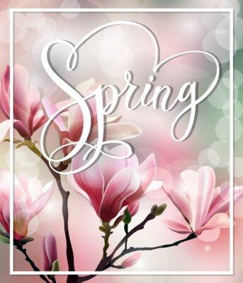 Obraz Jarní text s květy brunch Magnolia s rozmazané efektu. Jarní pozadí. Šablony vektor.