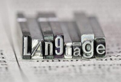 Obraz Jazyk