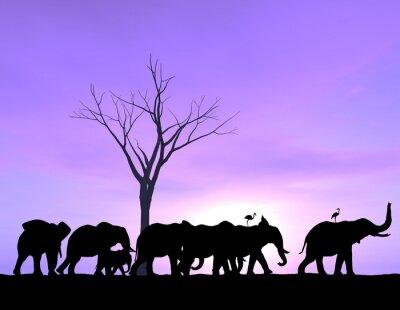 Obraz Jeden Elephant razí cestu Zatímco ostatní následovat s fialovým západem slunce nebo východu slunce.