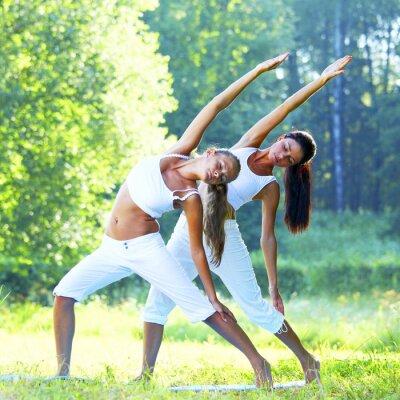Obraz jóga
