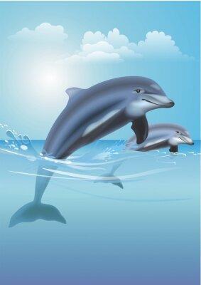 Obraz Jumping Dolphins Illustration