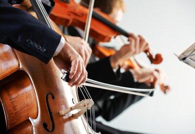 Obraz Klasická hudba koncert