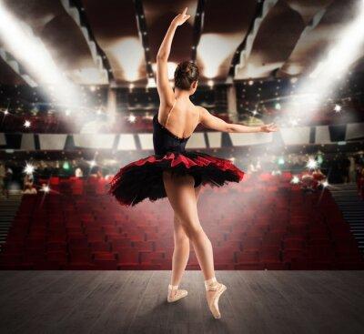 Obraz Klasický tanečník v divadle