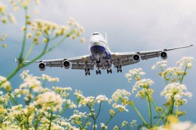 Obraz Komerční letadlo cestujícího letí nad květinovými poli na letišti.