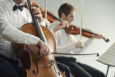 Obraz Koncert vážné hudby