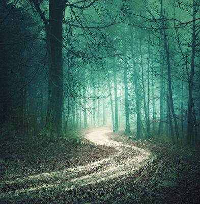 Obraz Kouzelná barevný podzim lesní cesta. Zasněný bllue zelené barvy mlhavo venkově prales strom s vinutím silnici pozadí. Fantasy barevné lesy. Barevný filtr efekt použit.