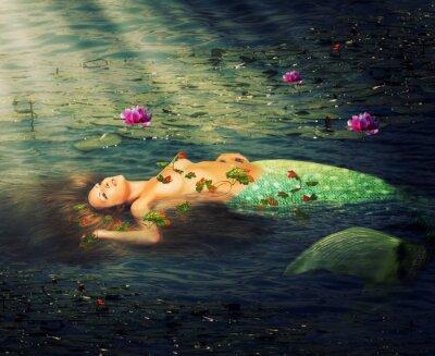 Obraz Krásná žena mořská panna