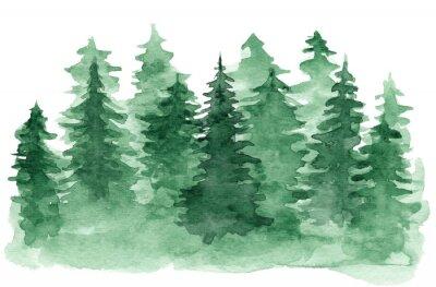 Obraz Krásné akvarel zázemí s zelený jehličnatý les. Tajemné jedle nebo borovice ilustrace pro zimní vánoční design, izolovaných na bílém pozadí
