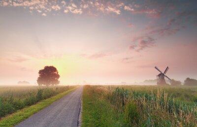 Obraz krásný letní východ slunce na nizozemské zemědělské půdy