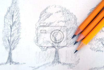 Kresba Tuzkou Na Zastinenych Stromy Obrazy Na Stenu Obrazy Grafit