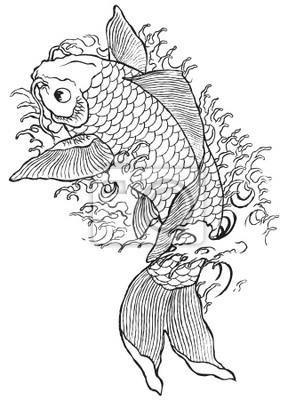 Kreslene Rucne Koi Ryby Obrazy Na Stenu Obrazy Kapr Koi