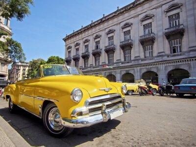 Obraz Kuba, Havana s vinobraní