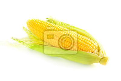 Kukuřičný klas