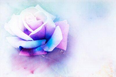 Obraz Květina akvarel ilustrace.