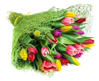 Obraz kytice z 25 barevných tulipánů, izolovaných na bílém pozadí