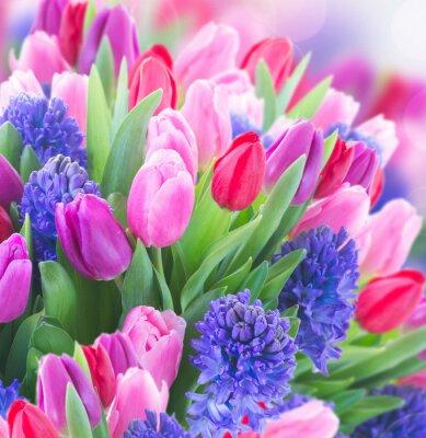 Obraz kytice z modrého hyacintu a tulipány