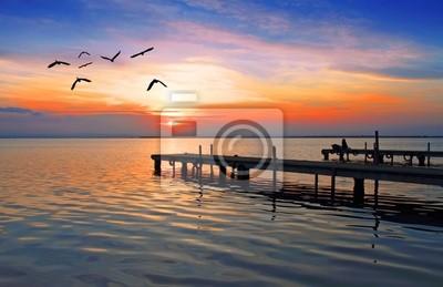 Obraz las aves del lago