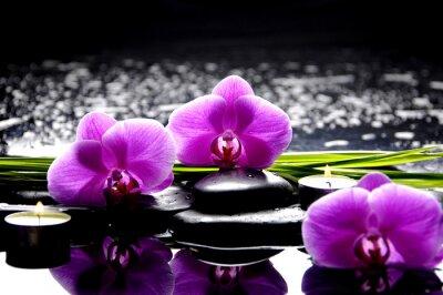 Obraz Lázeňské zátiší se sadou růžové orchideje a kameny na rozmyšlenou
