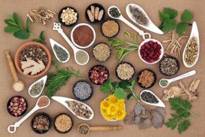Obraz Léčivé byliny pro ženy