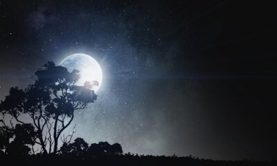 Obraz Letní noční pozadí