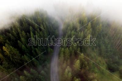 Obraz Letní pohled na horské silnici