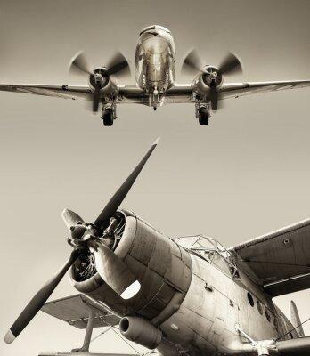 Obraz letoun