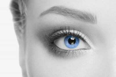Obraz Lidské oko