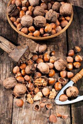 Obraz Lískové a vlašské ořechy