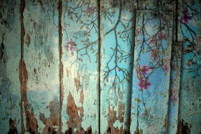 Obraz Magnólie na jaře staré pozadí