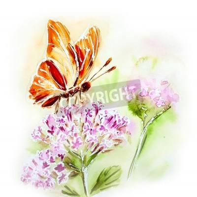 Obraz Malované akvarelem karta s letních květin a motýl