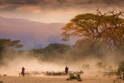 Obraz Masai pastýři s stáda koz og