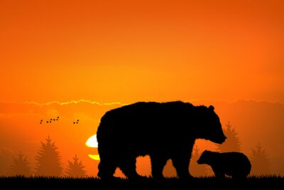 Obraz medvěd hnědý medvěd a dítě v lese