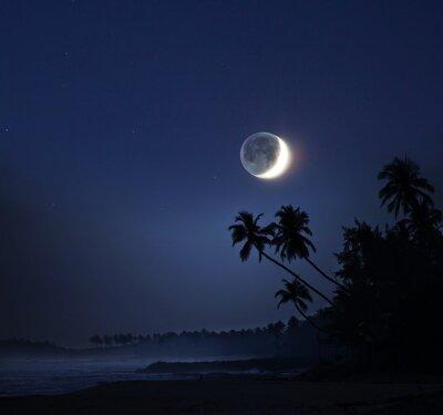 Obraz Měsíční svit