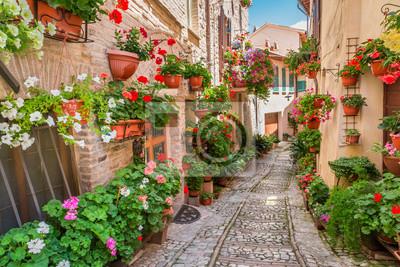Městečko v slunečný den, Itálie, Umbrie